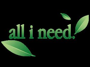 all i need logo